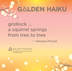 Golden Haiku - Vanessa